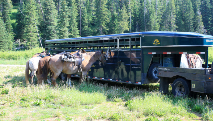 West Yellowstone, Montana Cabins Activities - Horseback Riding