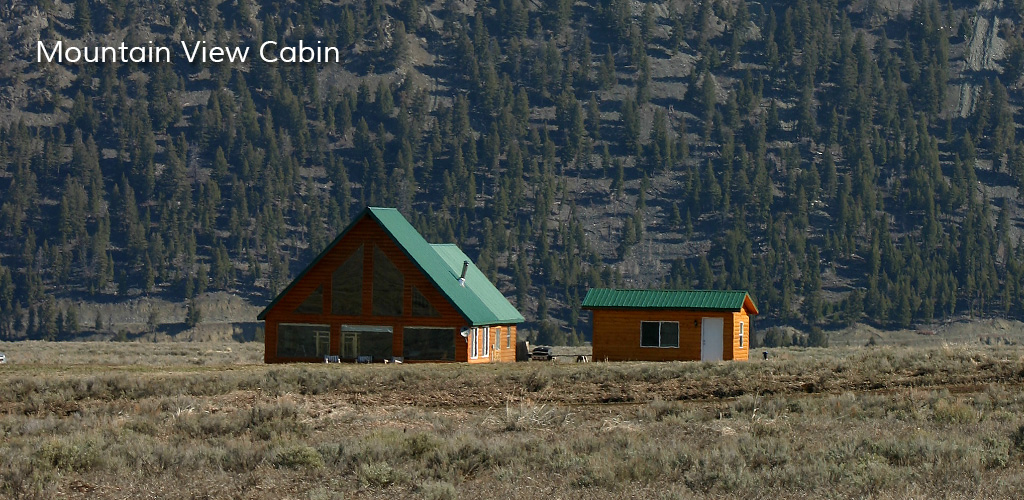 Montana Cabin Rentals In West Yellowstone Mountain View
